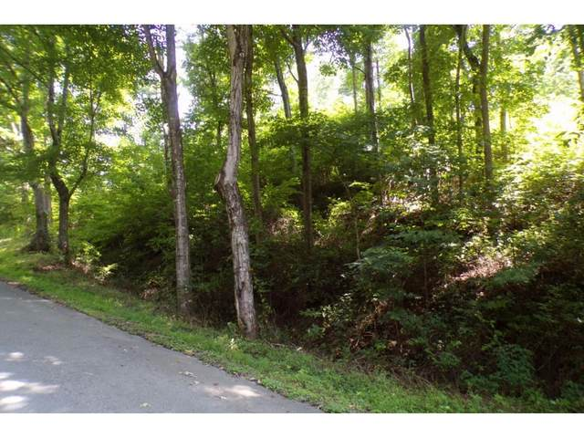 Tbd Buffalo Run Lot 1-A, Mountain City, TN 37683 (MLS #9908119) :: Bridge Pointe Real Estate
