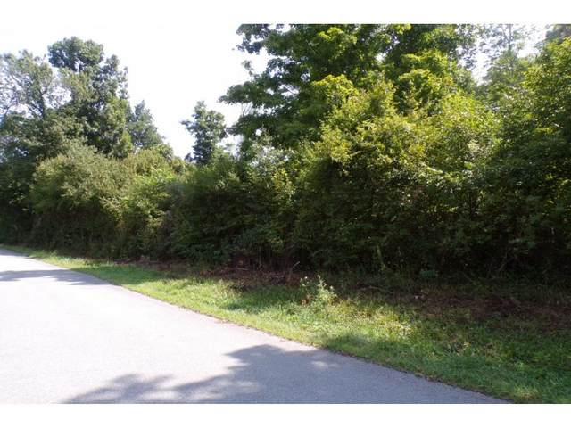 Tbd Buffalo Run Lot 2, Mountain City, TN 37683 (MLS #9908120) :: Bridge Pointe Real Estate