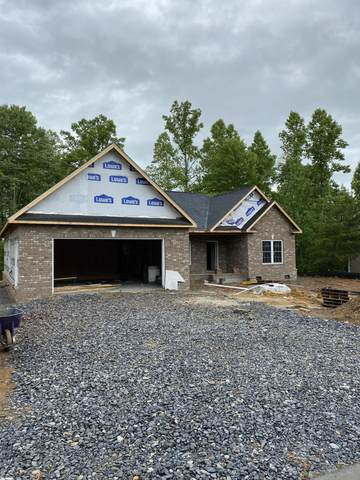 271 Holland View Drive, Jonesborough, TN 37659 (MLS #9908153) :: Conservus Real Estate Group