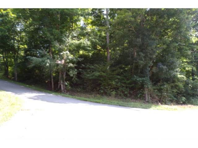 Tbd Buffalo Run Lot 1-B, Mountain City, TN 37683 (MLS #9908163) :: Bridge Pointe Real Estate
