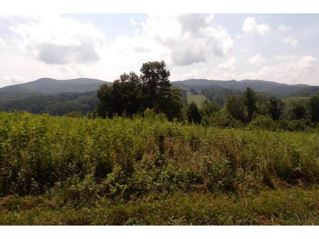 Tbd Buffalo Run Lot 9, Mountain City, TN 37683 (MLS #9908164) :: Bridge Pointe Real Estate