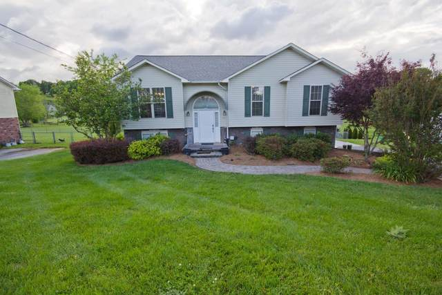 116 Alfalfa Lane, Jonesborough, TN 37659 (MLS #9908223) :: Conservus Real Estate Group