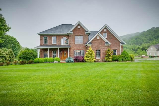 1116 Dover Drive, Kingsport, TN 37664 (MLS #9908225) :: Bridge Pointe Real Estate