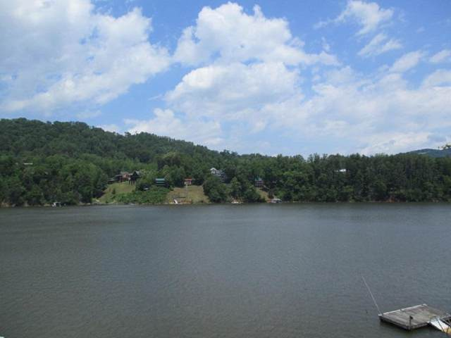2199 Norris Road, Butler, TN 37640 (MLS #9908255) :: Bridge Pointe Real Estate