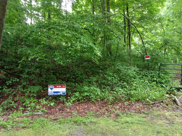 131 Spring Dale Dr, Unicoi, TN 37692 (MLS #9908272) :: Highlands Realty, Inc.