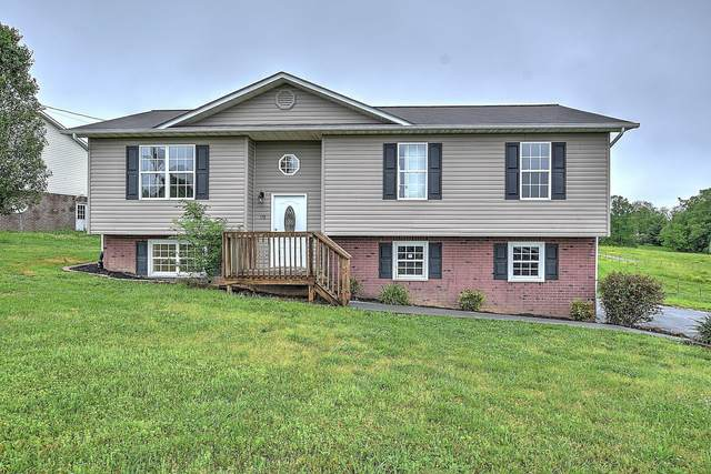 178 Rauhof Road, Telford, TN 37690 (MLS #9908274) :: Conservus Real Estate Group