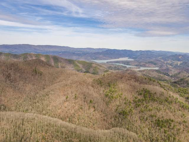 Tbd Mays Ridge Rd Road, Butler, TN 37640 (MLS #9908287) :: Red Door Agency, LLC