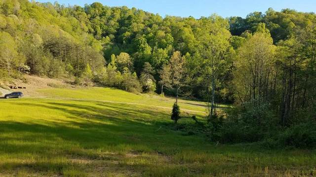 00 Raven Hill Road, Tazewell, TN 37879 (MLS #9908337) :: Highlands Realty, Inc.