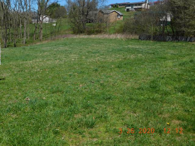 Tbd Long Av/Dude St, Saint Paul, VA 24283 (MLS #9908385) :: Bridge Pointe Real Estate
