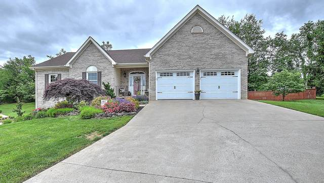 206 Galway Court, Greeneville, TN 37745 (MLS #9908449) :: Conservus Real Estate Group