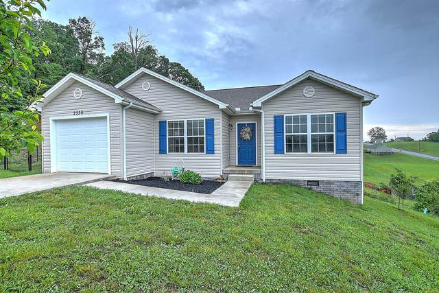 2330 Serenity Court, Kingsport, TN 37665 (MLS #9908492) :: The Baxter-Milhorn Group