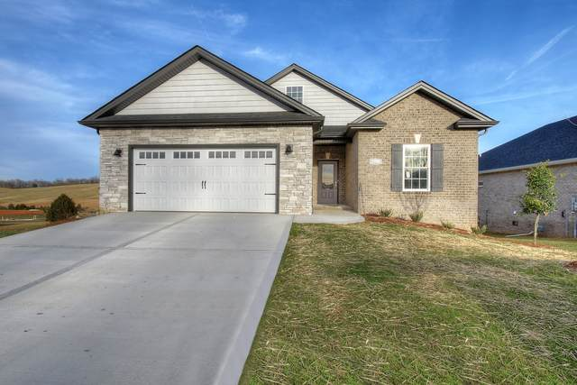 2368 Haystack Circle, Piney Flats, TN 37686 (MLS #9908493) :: The Baxter-Milhorn Group