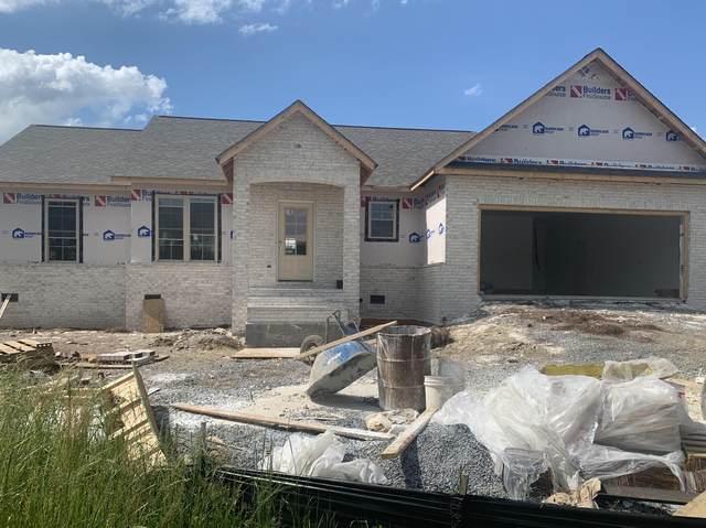 1101 Lemongrass Drive, Jonesborough, TN 37659 (MLS #9908508) :: Conservus Real Estate Group