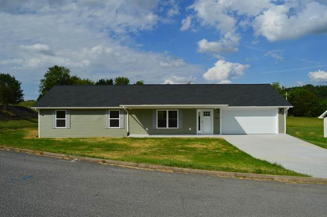 156 Cimarron Trail, Afton, TN 37616 (MLS #9908524) :: Highlands Realty, Inc.