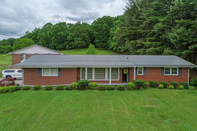 213 Surgoinsville Creek Road, Surgoinsville, TN 37873 (MLS #9908528) :: Conservus Real Estate Group