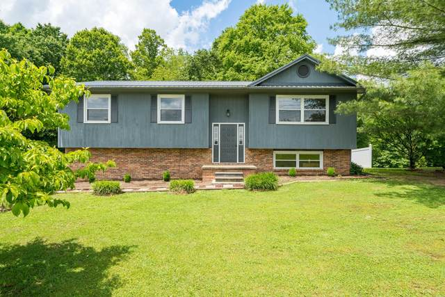 1084 Muddy Creek Road, Piney Flats, TN 37686 (MLS #9908539) :: Highlands Realty, Inc.