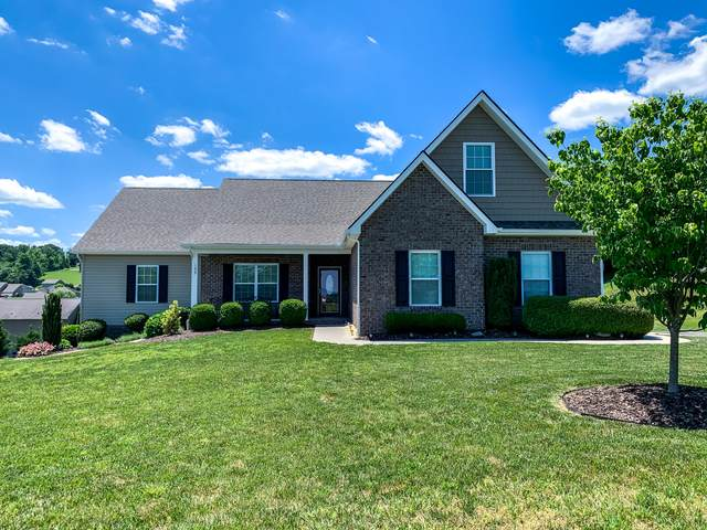 135 Bob Ford Road, Jonesborough, TN 37659 (MLS #9908560) :: Conservus Real Estate Group