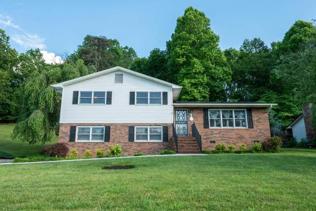 225 Lane Street, Church Hill, TN 37642 (MLS #9908561) :: Bridge Pointe Real Estate