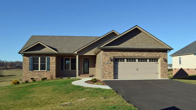 148 Serene Court, Jonesborough, TN 37659 (MLS #9908600) :: Conservus Real Estate Group
