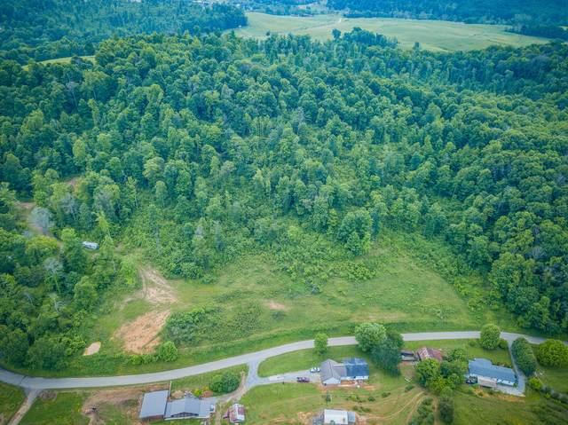 550 Rodefer Hollow Road, Blountville, TN 37617 (MLS #9908609) :: Conservus Real Estate Group