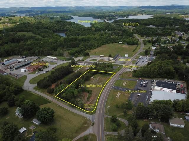 2551 Buffalo Trail, Morristown, TN 37814 (MLS #9908631) :: Conservus Real Estate Group