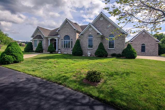 1738 Harbin Hill Road, Mountain City, TN 37683 (MLS #9908645) :: Conservus Real Estate Group