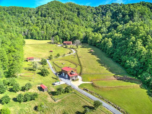210 Chandler Cove Road, Erwin, TN 37650 (MLS #9908673) :: Highlands Realty, Inc.