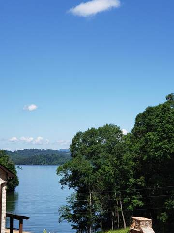 22-- Island Park Circle, Talbott, TN 37877 (MLS #9908675) :: Conservus Real Estate Group