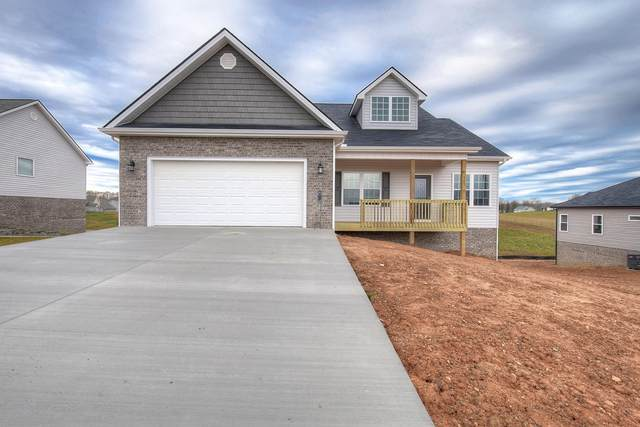 439 Gap Creek Road, Elizabethton, TN 37643 (MLS #9908716) :: Conservus Real Estate Group