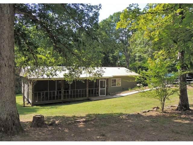 740 Nelse Roberts Road, Chuckey, TN 37641 (MLS #9908766) :: Conservus Real Estate Group