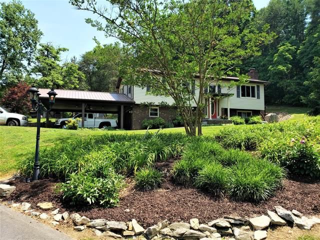 878 Tuggle Hill Road, Rogersville, TN 37857 (MLS #9908780) :: Conservus Real Estate Group
