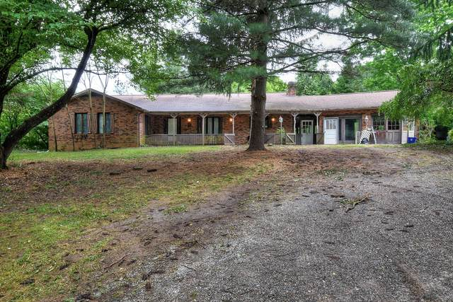 162 Woodsong Way, Jonesborough, TN 37659 (MLS #9908789) :: The Baxter-Milhorn Group