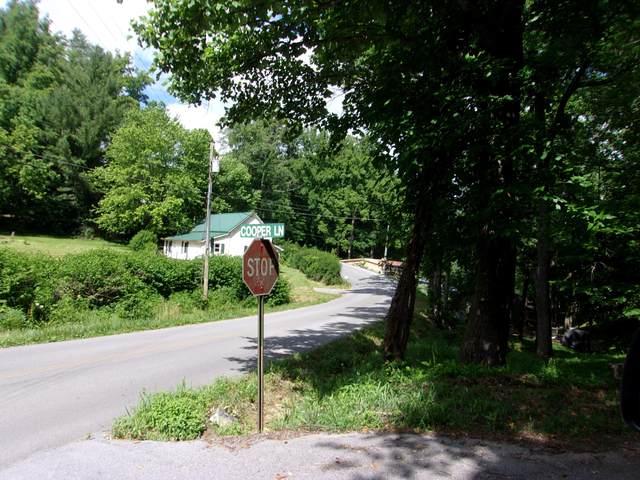 125 Cooper Lane, Unicoi, TN 37692 (MLS #9908956) :: Bridge Pointe Real Estate