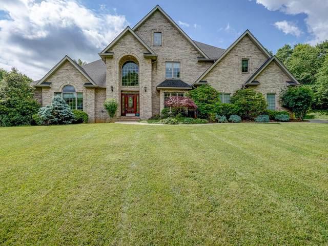 392 Woodway Drive, Blountville, TN 37617 (MLS #9909019) :: Bridge Pointe Real Estate