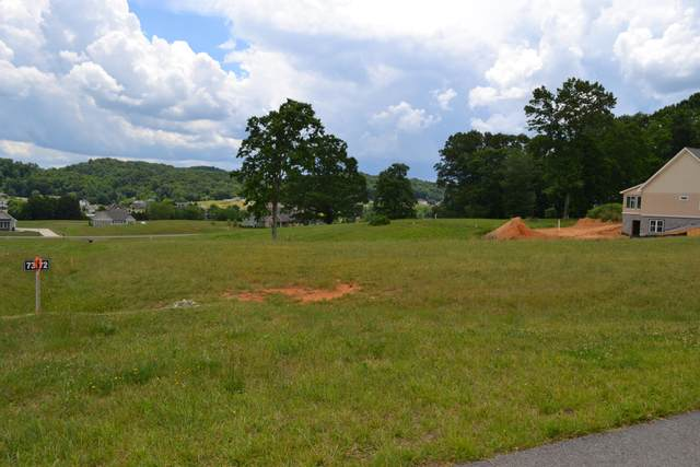 Tbd Clifton Ridge Road, Abingdon, VA 24210 (MLS #9909062) :: Conservus Real Estate Group