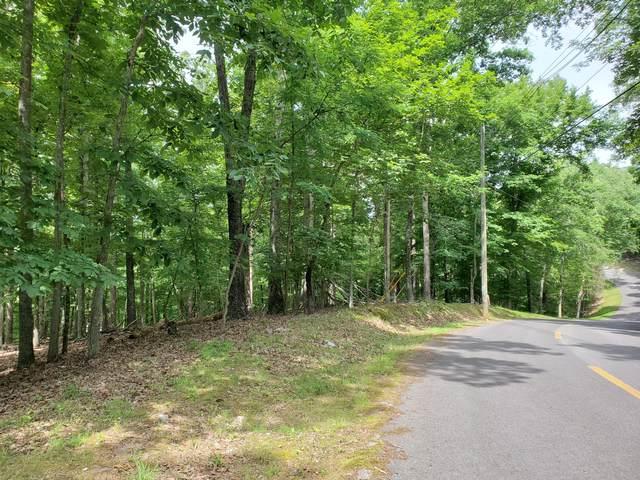 314 Chelaque Way, Mooresburg, TN 37811 (MLS #9909158) :: Red Door Agency, LLC
