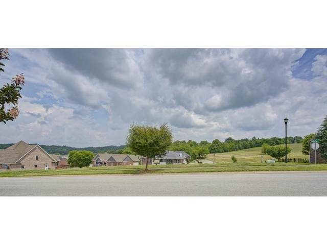 300 Harbor Approach, Johnson City, TN 37601 (MLS #9909266) :: Tim Stout Group Tri-Cities