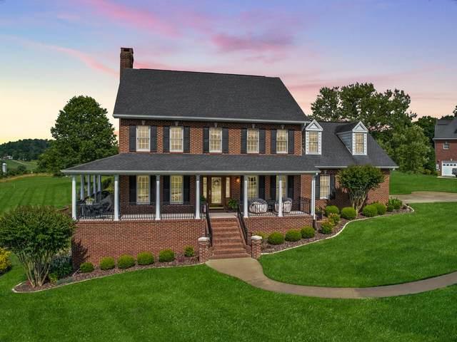 225 Chimney Top Lane, Chuckey, TN 37641 (MLS #9909408) :: Bridge Pointe Real Estate