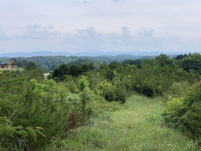 30.14 Acre Blue Springs Parkway, Mosheim, TN 37818 (MLS #9909450) :: Highlands Realty, Inc.