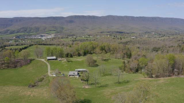 819 Point Of View Drive, Ewing, VA 24248 (MLS #9909456) :: Conservus Real Estate Group