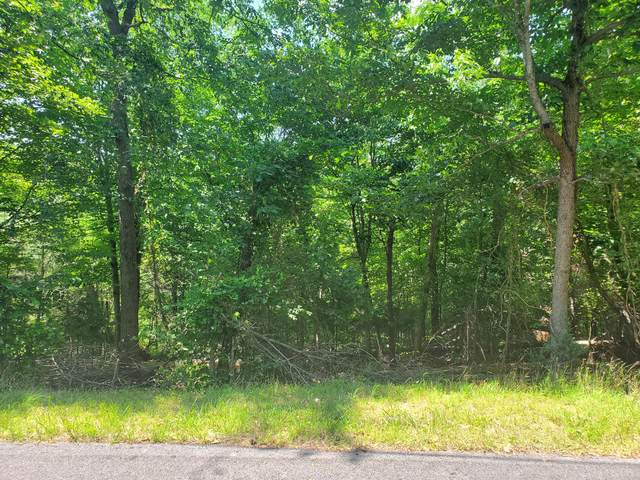 2005 Tahlequah Lane, Mooresburg, TN 37811 (MLS #9909477) :: Conservus Real Estate Group