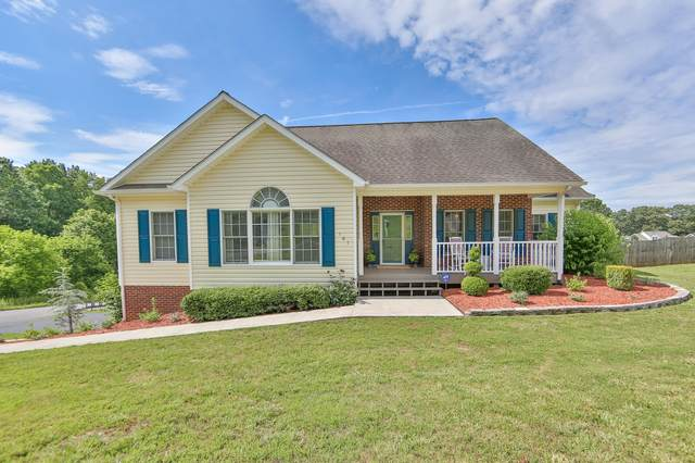 161 Cindy Anne Drive, Gray, TN 37615 (MLS #9909494) :: Bridge Pointe Real Estate