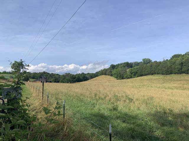 0 Blue Springs Parkway, Greeneville, TN 37743 (MLS #9909501) :: Highlands Realty, Inc.