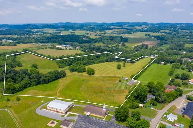 3811 Old State Route 34, Limestone, TN 37681 (MLS #9909502) :: Conservus Real Estate Group