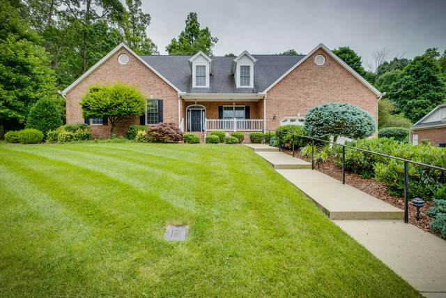 5409 Canova Court, Kingsport, TN 37664 (MLS #9909525) :: Tim Stout Group Tri-Cities