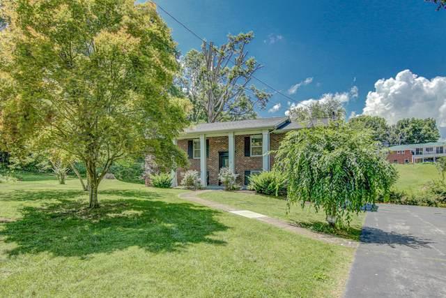 2 Earl Court, Johnson City, TN 37601 (MLS #9909623) :: Bridge Pointe Real Estate