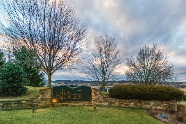 457 Heather View Drive, Jonesborough, TN 37659 (MLS #9909722) :: Bridge Pointe Real Estate