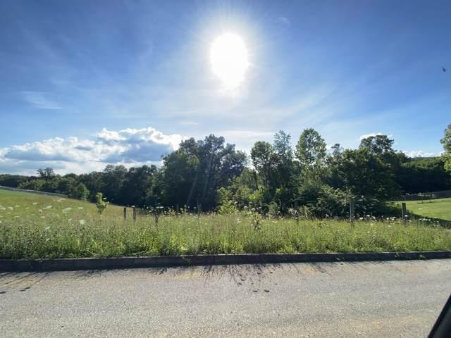 141 Ridges Drive, Chuckey, TN 37641 (MLS #9909858) :: Highlands Realty, Inc.