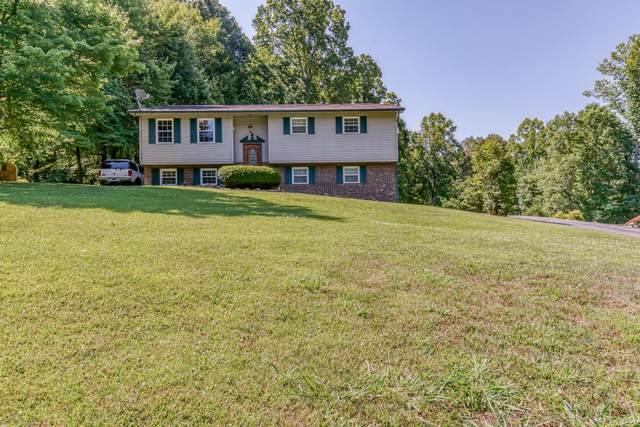 144 Reynolds Hills Drive, Rogersville, TN 37857 (MLS #9909910) :: Highlands Realty, Inc.