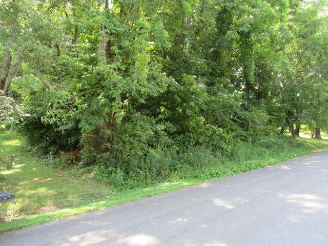 Tbd Briscoe Drive, Bristol, VA 24202 (MLS #9909925) :: Highlands Realty, Inc.